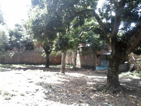 venta lote urbano barrio colombia en palmira