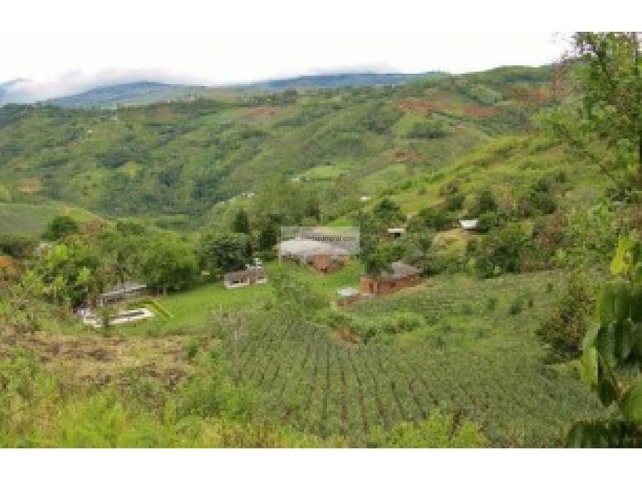 vendo finca km 40 vial al mar valle del cauca colombia