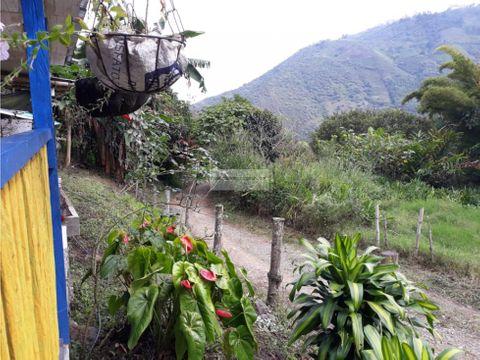 vendo finca en los nogales municipio de pradera valle del cauca