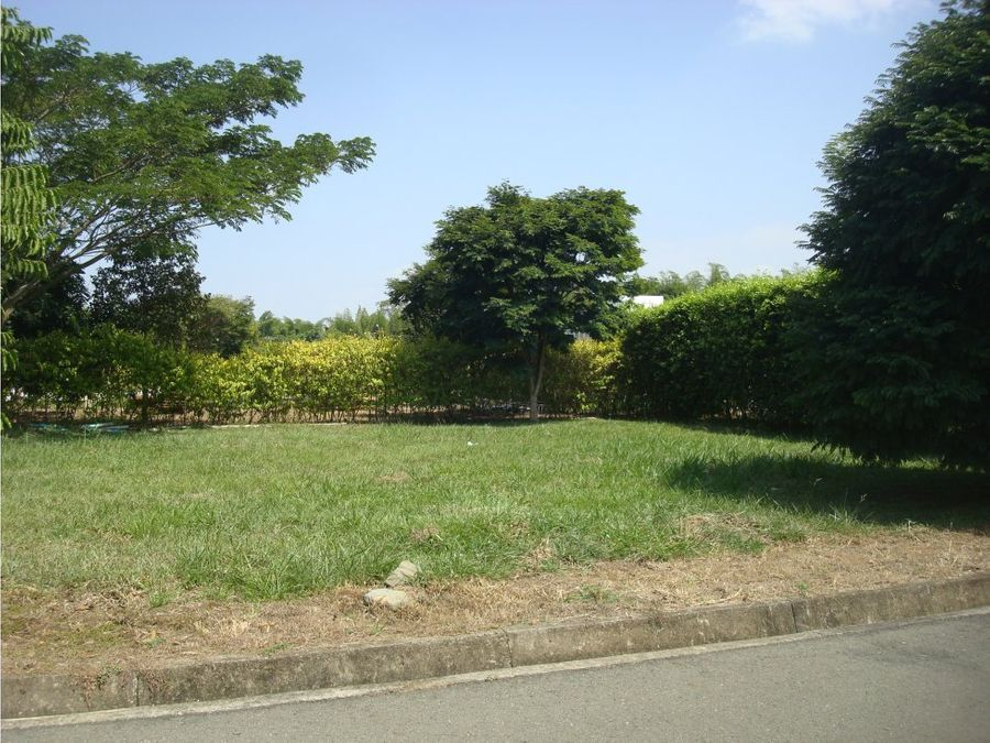 vendo lote campestre sector alfaguara en jamundi