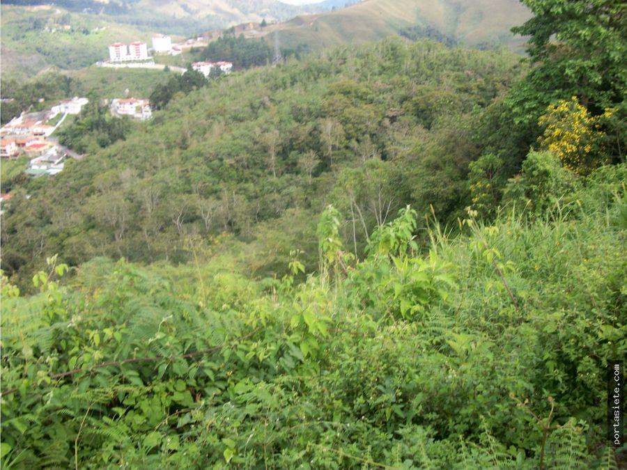 portafolio siete vende lote de terreno km 14 san antonio de los altos