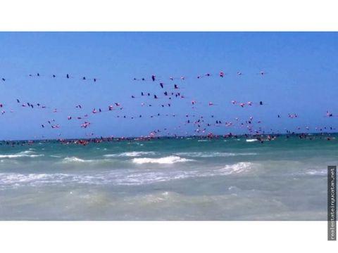 lotes en privada frente al mar de sisal