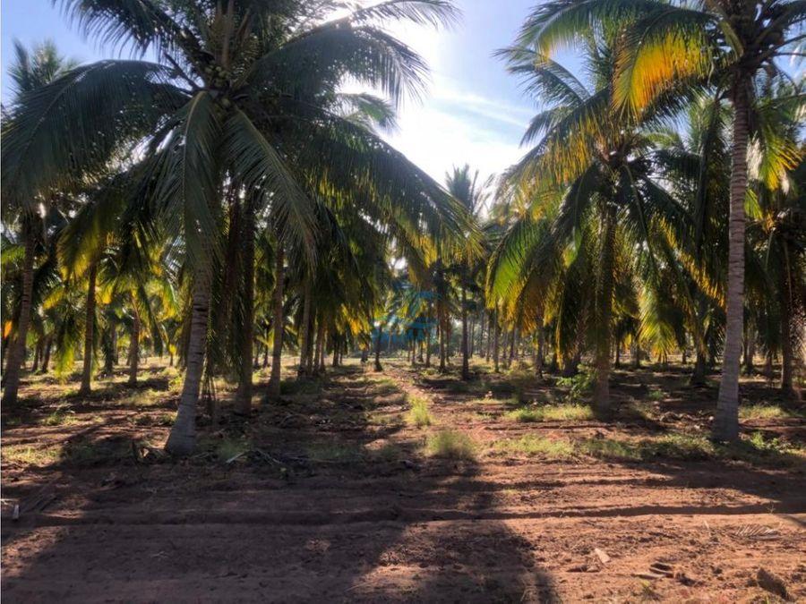 terreno en venta en la isla de la piedra con frente de playa