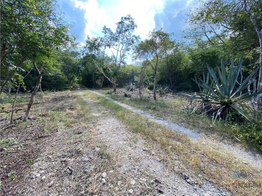 terrenos en venta en yucatan con luz y calles pavimentadas otho