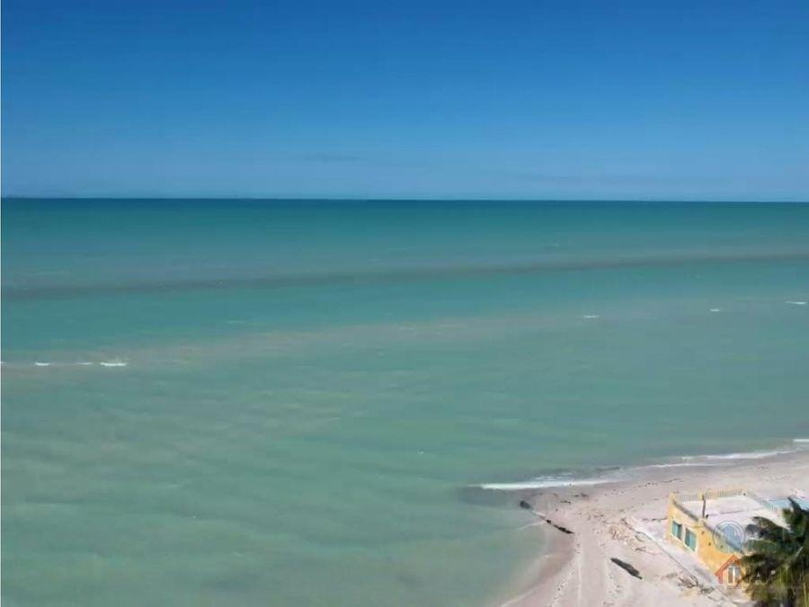 lotes de playa frente al mar en preventa celestun