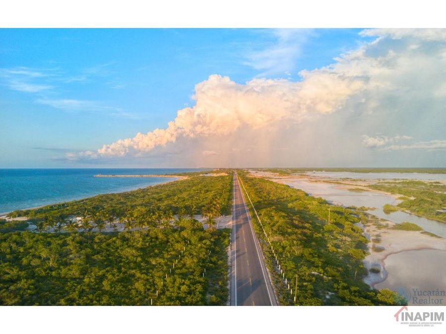 terreno en venta frente al mar san crisanto yucatan