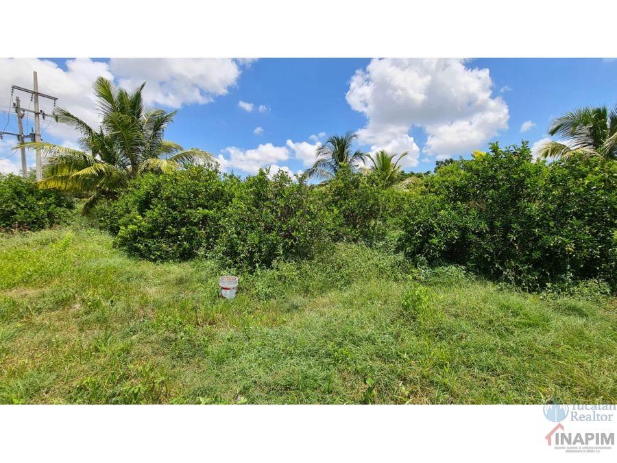 se vende terreno en yucatan