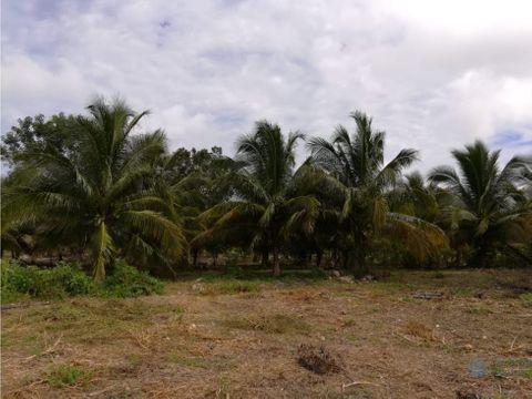 venta de rancho en uman yucatan oportunidad