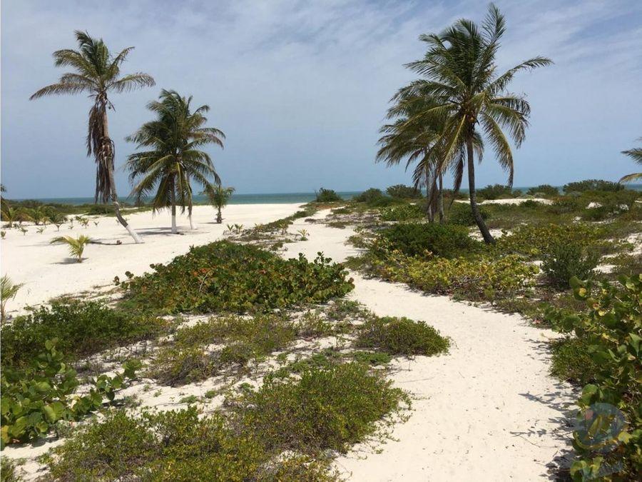 lotes residenciales a orilla de mar san crisanto