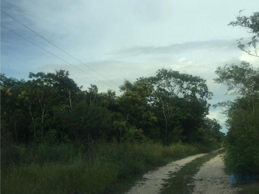lotes de inversion en venta en yucatan