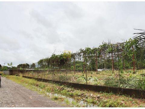 san sebastian del cocael cocaventa terreno 2500 m2