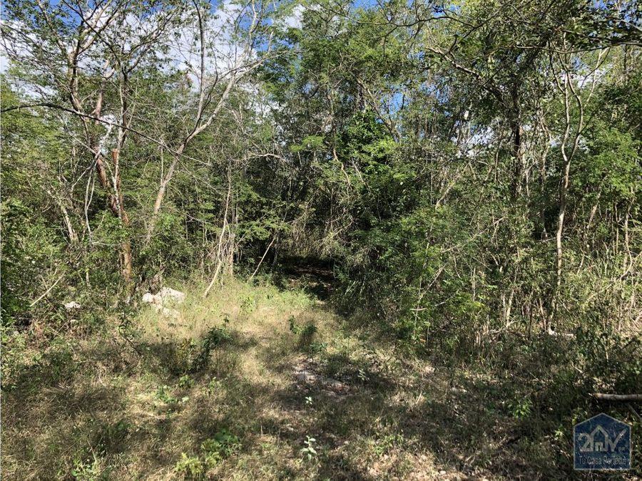 terreno con 3 cenotes en zona turistica
