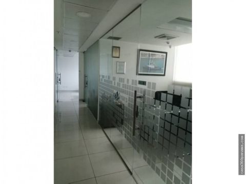 1606614 alquiler oficina oceania punta pacifica