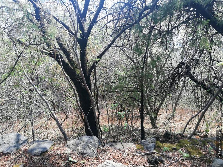 remato terreno escriturado en cuernavaca