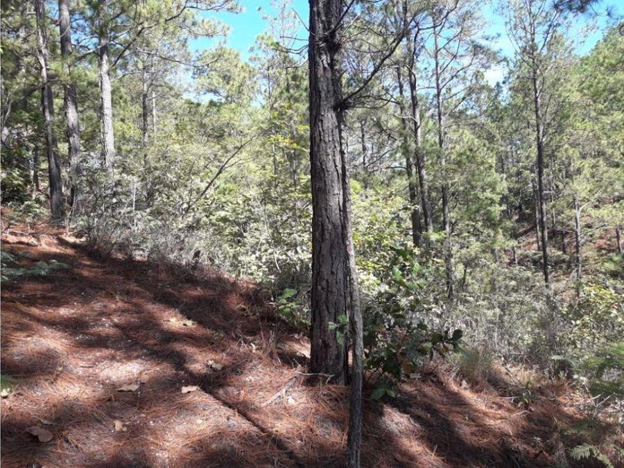 terreno res lomas del pinar