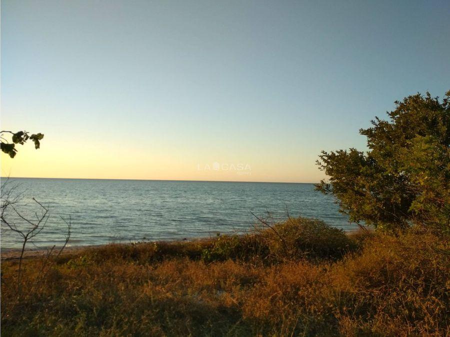 terreno frente al mar celestun