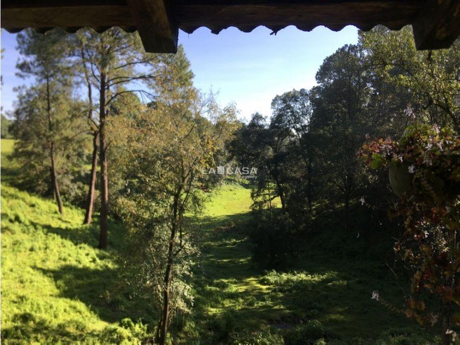 lotes de terreno con bosque
