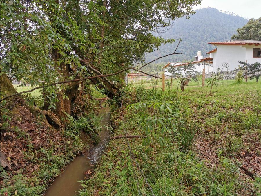 terreno con bosque y canal de agua de manantial valle de bravo