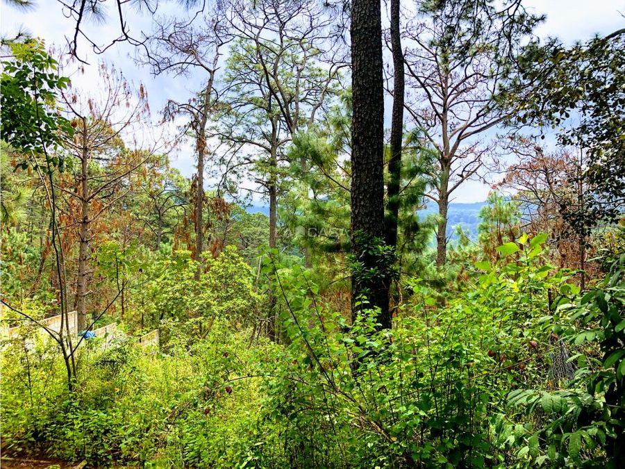 bonito terreno con vistas al bosque en monte alto