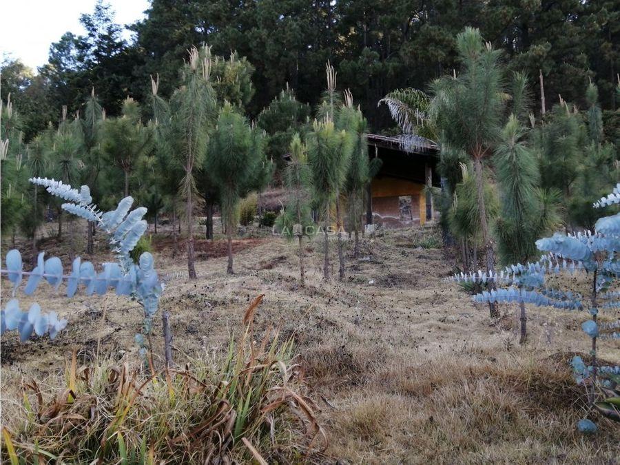 terreno en venta en san jeronimoamanalco