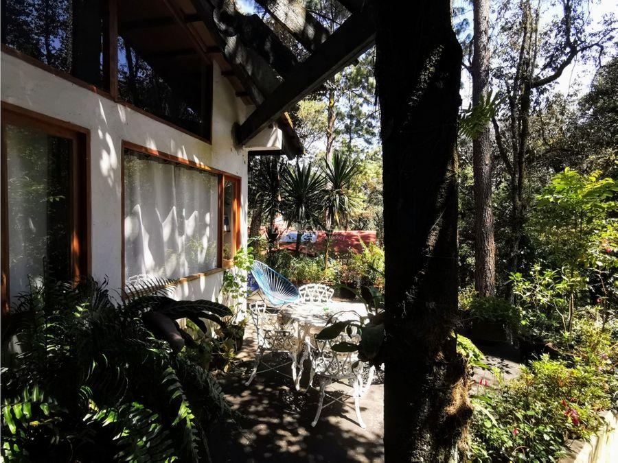 cabana rodeada de bosque en pena blanca