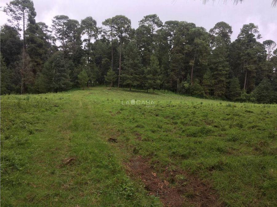 40 hectareas a 15 minutos de valle de bravo
