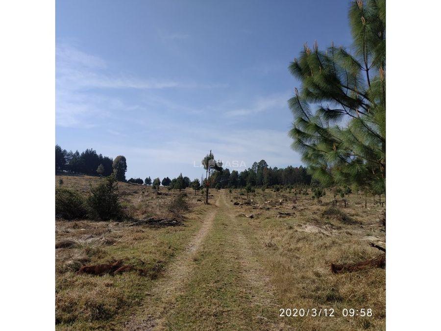 terreno para rancho en mesa rica