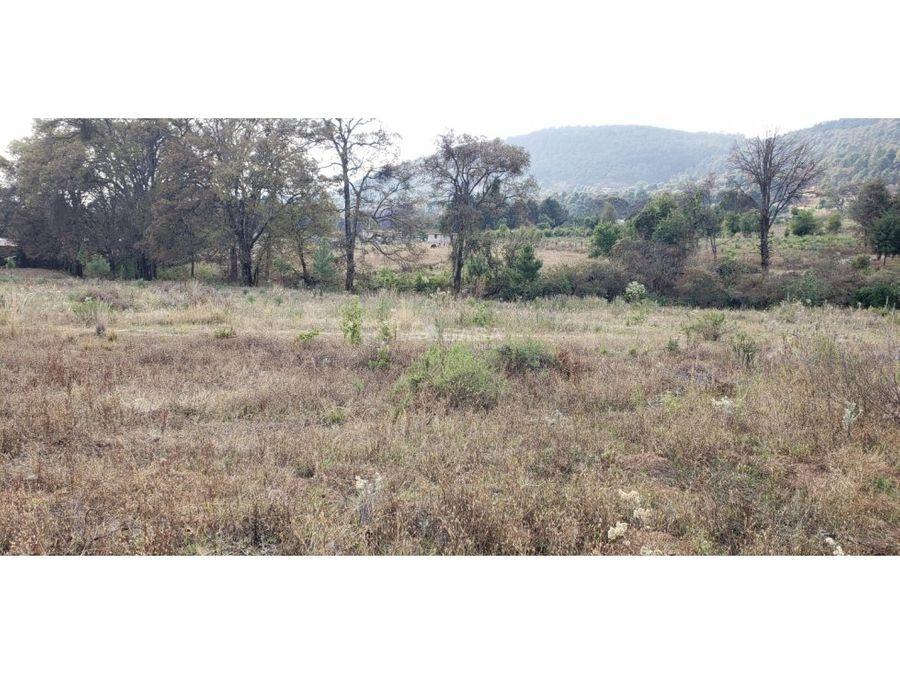 ideal para pequeno rancho en san gabriel ixtla