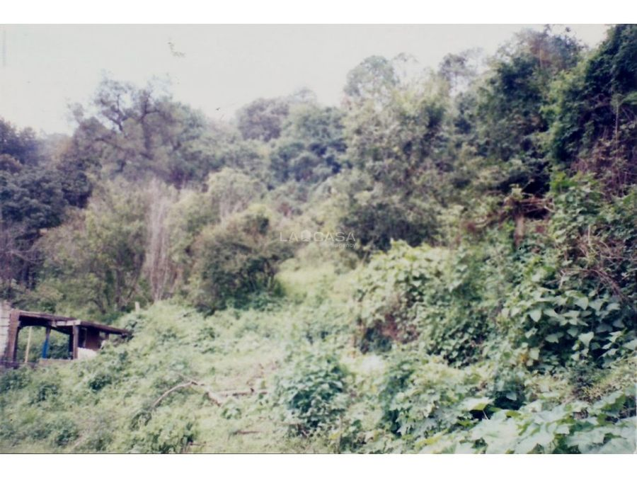 bonito terreno en temascaltepec