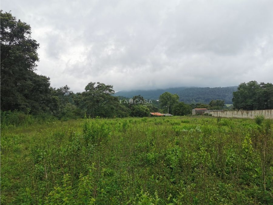 terreno para desarrollo con vistas al bosque