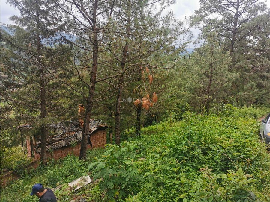 terreno boscoso con vista al pueblo y al bosque