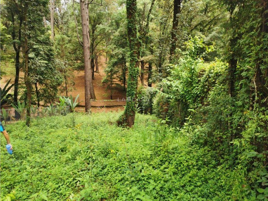 magico terreno con rio