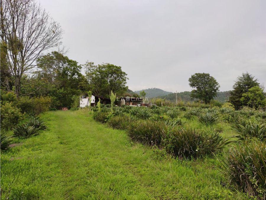rancho en venta en el aguacate
