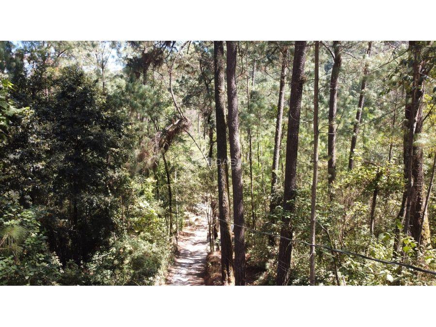 terreno con bosque y rio valle de bravo