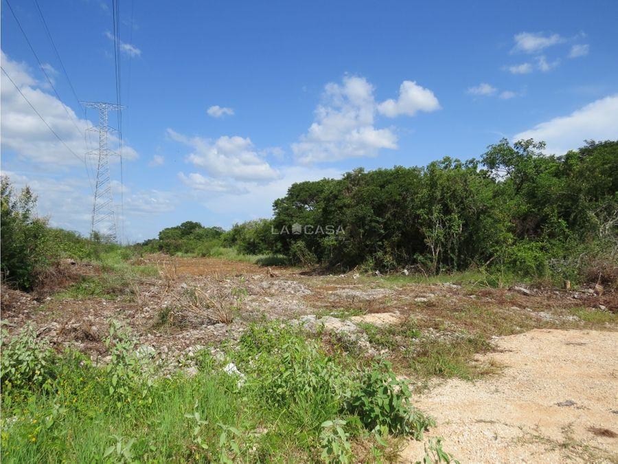 terrenos en venta en temozon