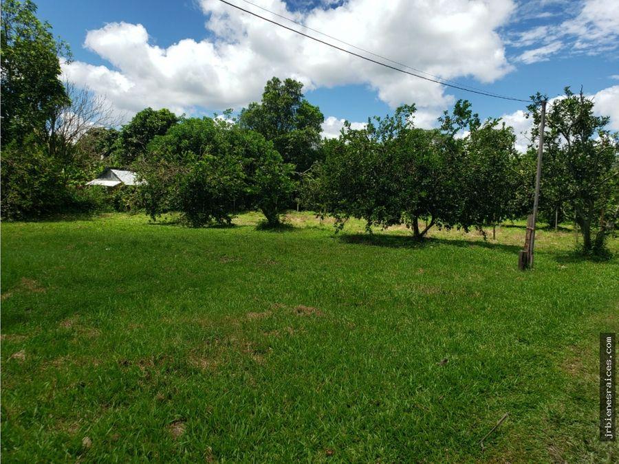 finca de 9 hct con produccion frutal y casa de campo iquitos