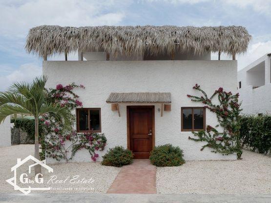 Casas en el Residencial Ibiza, El Ejecutivo