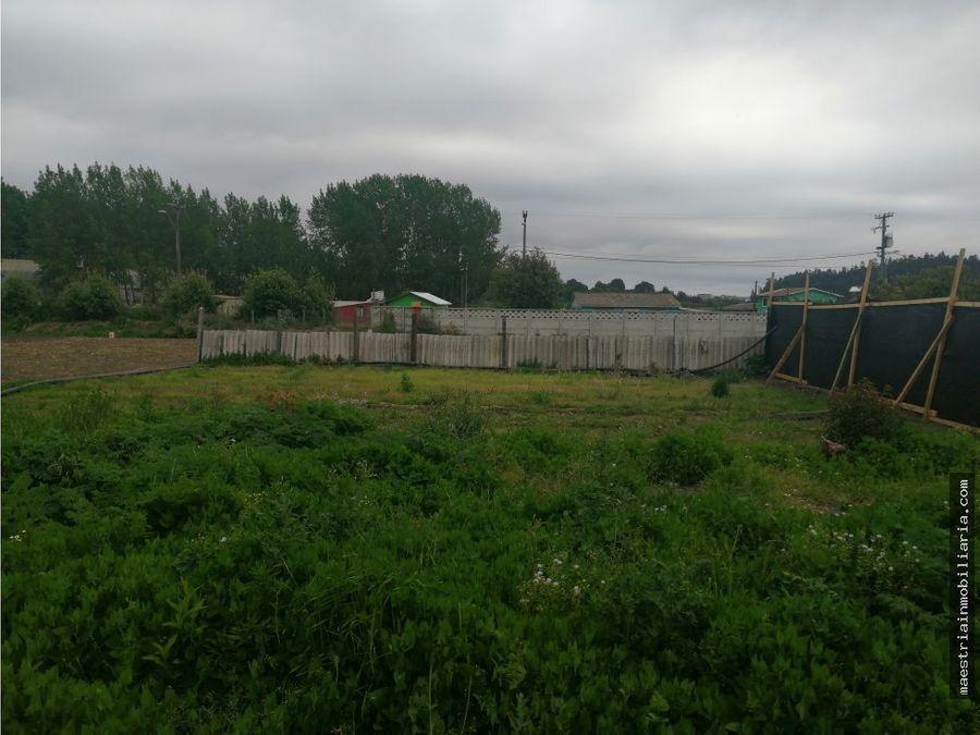 se vende terreno o sitio en sector cosmito penco