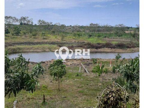 finca en venta de 4 hectareas en san antonio santa rosa 860