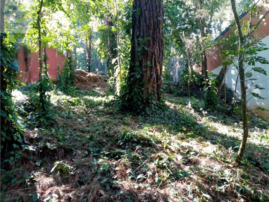 vendo terreno ecologico en labor de castilla1 d