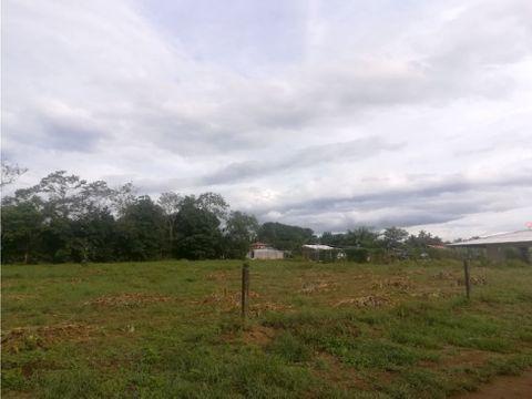 terreno de 5000m2 plano en venta en esparza