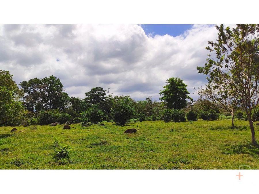 terreno 17495m2 venta valle azul san ramon km34