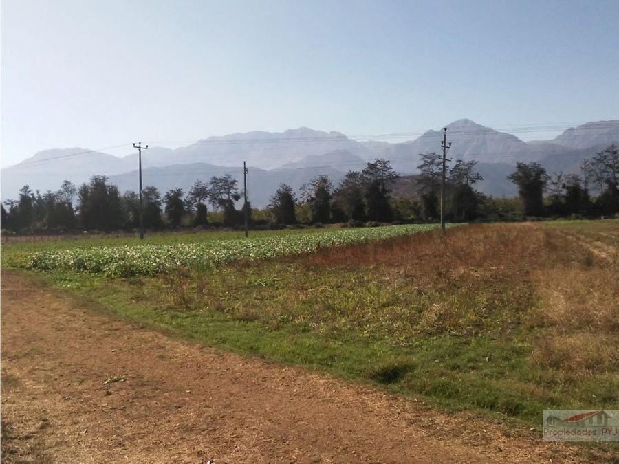 terreno en nogales de 17 hectareas