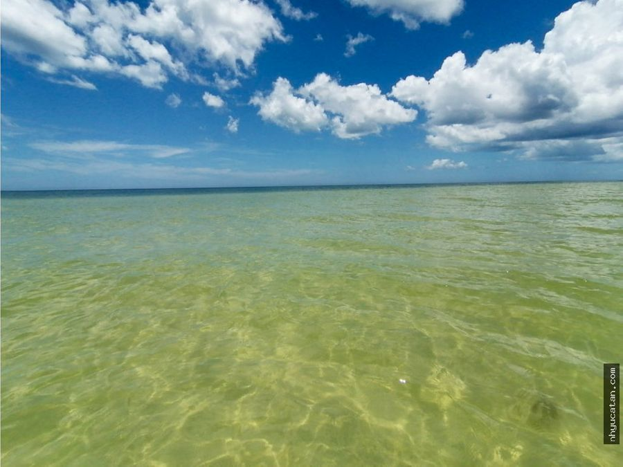terreno playa primera fila 50 min de merida 16 metros vista al mar