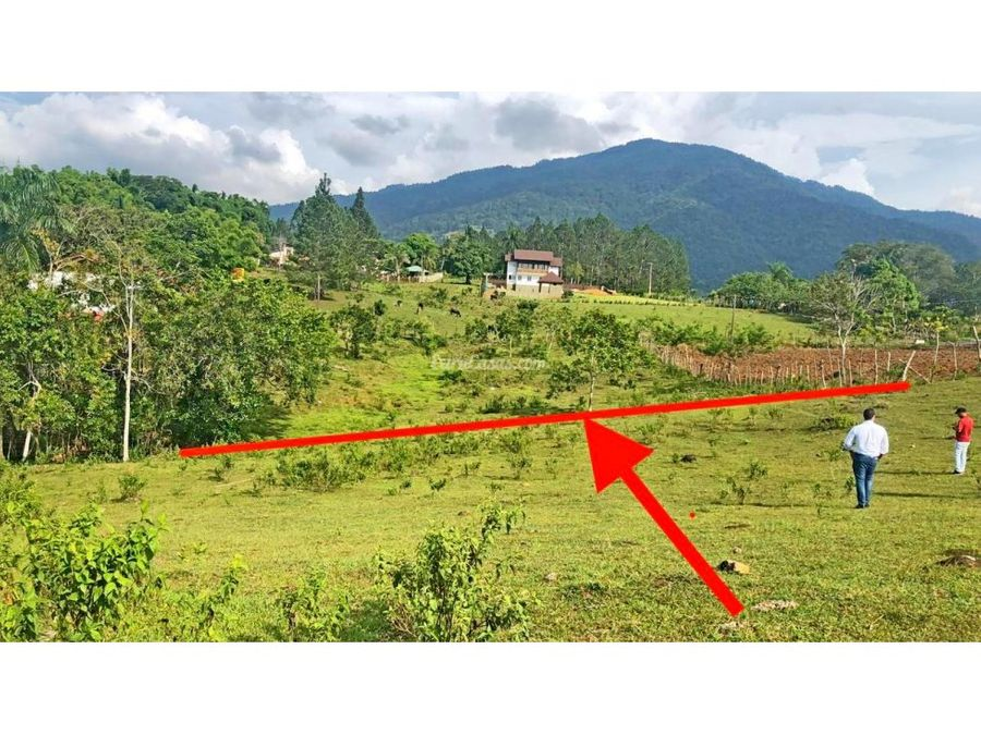 solar en venta en jarabacoa republica dominicana