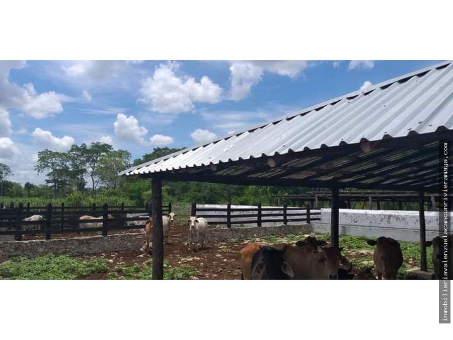 rancho con 35 hectareas