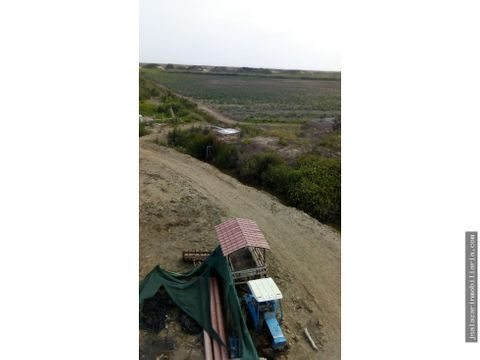 terreno agricola 80 has en macabi paijan la libertad