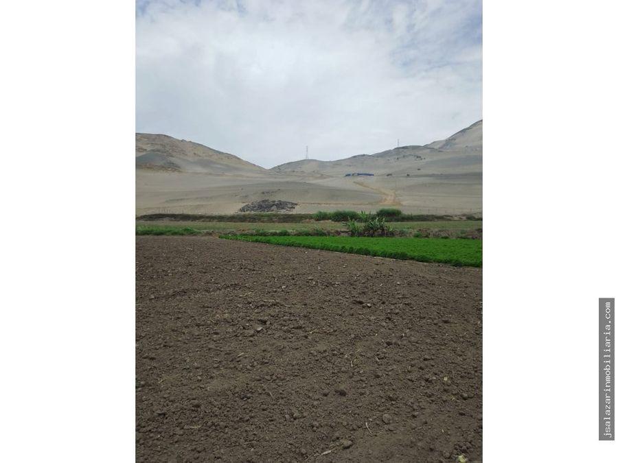 terreno eriazo 124178 has sector las lomas del fundo pasamayo