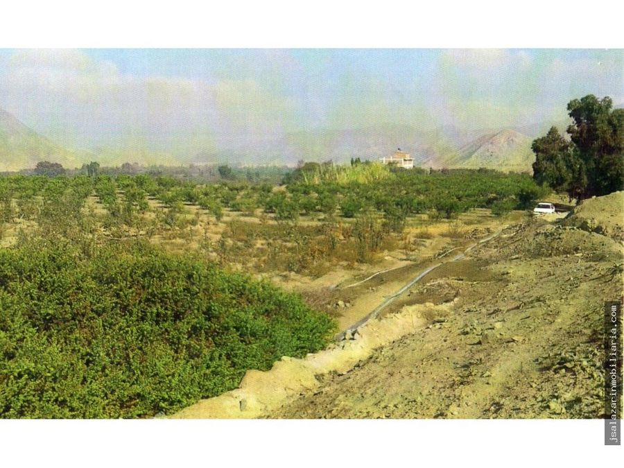 terreno agricola 120 has aucallama huaral