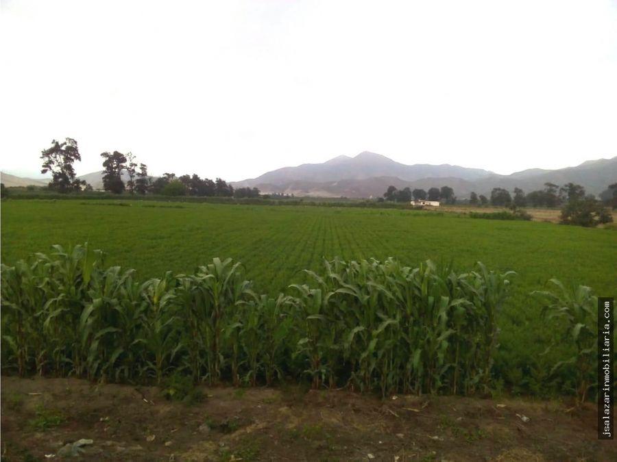 terreno agricola 64 has el hatillo chancayllo km 96 pan norte